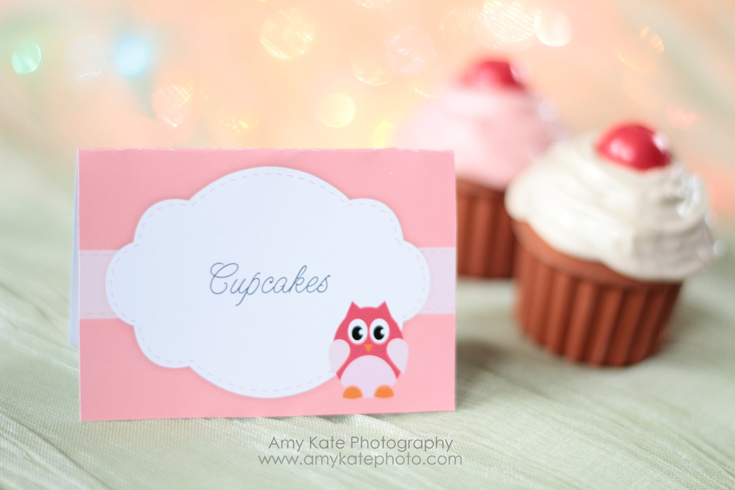 Owl Girl Baby Shower PRINTABLE Food Labels - My Party Design