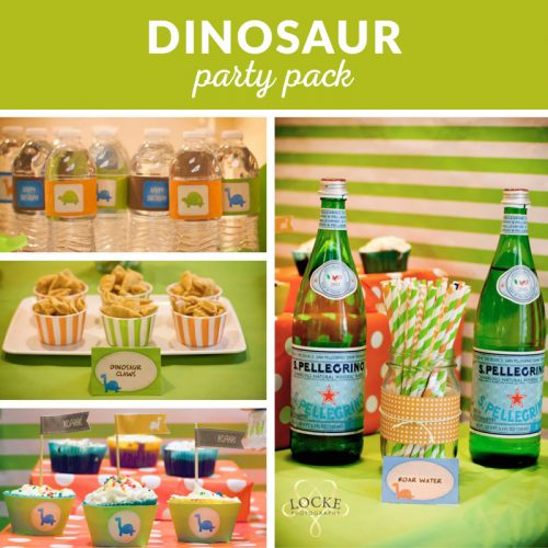 dinosaur party decoration printables