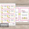 printable owl baby shower diaper raffle